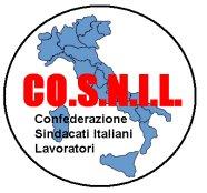 cosnil logo