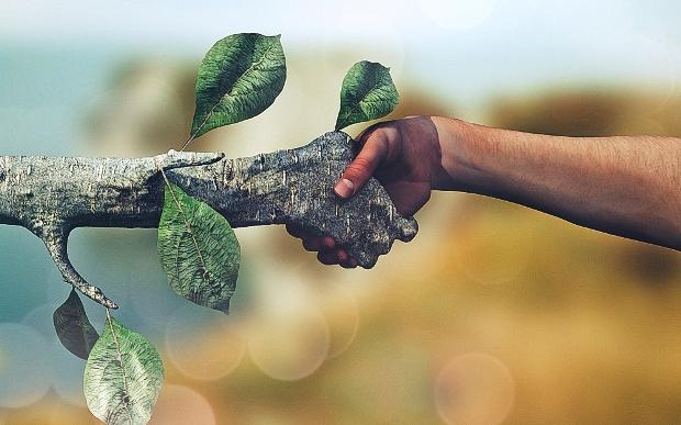Green-Economy-Hand-Shake